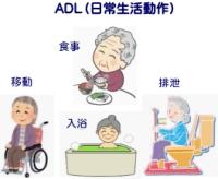健康の質と日常生活動作(ADL)