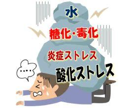 現代人は五大ストレスで瀕死する