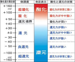 「水道水の酸化還元電位」ORP(mV)の測定データ