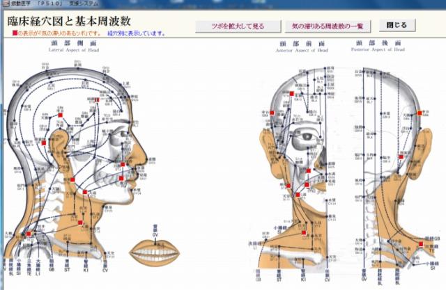 波動分析プログラム・メニュー「臨床経穴図の全ツボを見る」の頭部