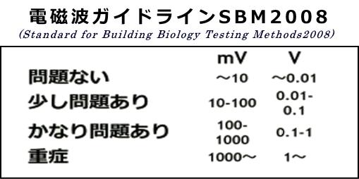 電磁波ガイドラインSBM2008