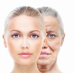 顔で見る老化の経年変化