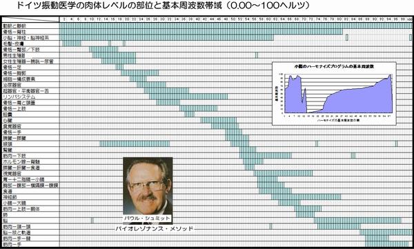 ドイツ振動医学の肉体レベルの周波数帯域の表示